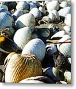 Muscle Beach Metal Print