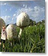Mushroom Boy Metal Print