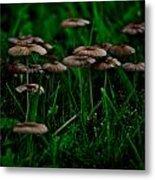 Mushroom Forest Metal Print