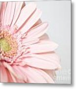 My Heart Opens For You Metal Print
