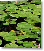 My Pad Or Yours Metal Print