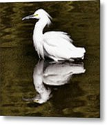 My Reflection  Metal Print