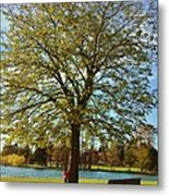 My Tree Metal Print