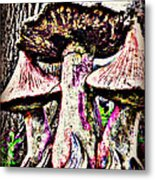Mystic Mushrooms Metal Print by Corrie Knerr