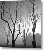 Mystic Trees 2 Metal Print