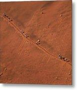 Namibia Dune Hoppers Metal Print
