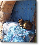 Nap After The Meal Metal Print
