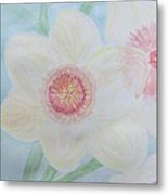 Narcissus Flower Metal Print