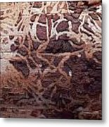 Natural Carvings Metal Print