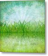 Nature And Grass On Paper Metal Print by Setsiri Silapasuwanchai