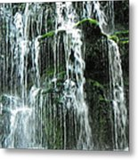 Nature At It's Best Metal Print