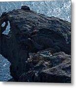 nature Protecter Santorini Island Metal Print