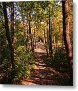 Nature Trail Metal Print