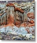 Natures Beauty Metal Print