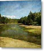 Natures Beauty Metal Print by Terrie Taylor