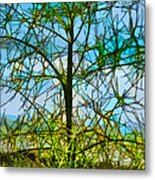 Nature's Church Windows  Metal Print
