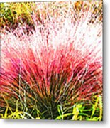 Nature's Fireworks  Metal Print