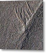Natures Freeway Metal Print