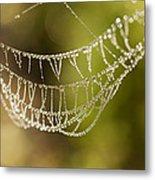 Natures Jewels Metal Print