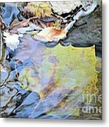 Nature's Leaf Collage Metal Print