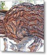 Nature's Natural Abstract Art Metal Print