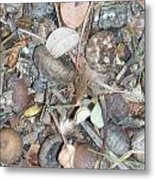 Natures Nipples Metal Print