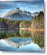 Nature's Reflections Metal Print