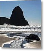 Natures Release Value Metal Print