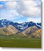 Nature's Spectacle Metal Print