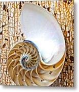 Nautilus Shell On Rusty Table Metal Print