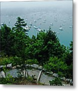 Ne Harbor Maine Seen From Thuya Gardens Mt Desert Island  Metal Print