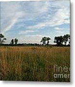 Nebraska Prairie One Metal Print