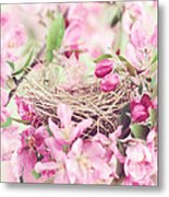 Nest In Soft Pink Metal Print