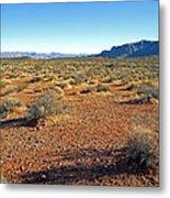 Nevada Desert Metal Print