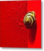 Never A Shortage Of #snails Back Here Metal Print