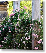Never Promised You A Rose Garden... Metal Print