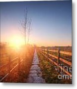 New Beginning Metal Print