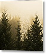 New Dawn Metal Print by Terrie Taylor