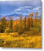 New Hampshire Fall Color Part Deux Metal Print