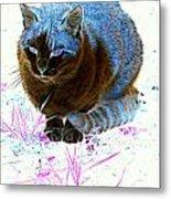 New Kitty Blue Metal Print