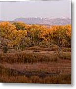 New Mexican Fall Metal Print by Denice Breaux