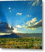 New Mexico Desert Metal Print
