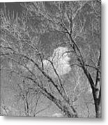 New Mexico Series - A Cloud Behind Black And White Metal Print