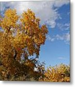 New Mexico Series - Desert Landscape Autumn Metal Print