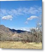 New Mexico Series - Winter Desert Beauty Metal Print