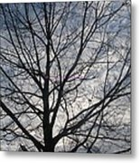 New Year's Morning Metal Print