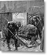 New York: Aspca, 1888 Metal Print