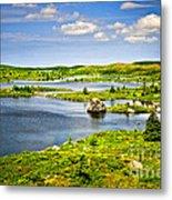 Newfoundland Landscape Metal Print
