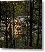 Nichols Lake Metal Print
