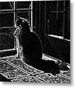 Nickel In The Moonlight Metal Print